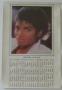 Thriller (LP cover) 1984 Unofficial Calendar/Poster (USA)
