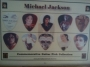Michael Jackson Framed Unofficial 10 Guitar Pick Set (USA)