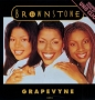 "Grapewine (Brownstone) Commercial 12"" Single (Holland)"