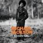 Michael Jackson Essential Commercial CD Album (2014) (Europe)