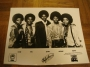 The Jacksons Promotional Press Photo 8X10 USA