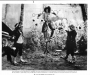 """The Wiz Official 10""""x8"""" Promotional Press Photo *Universal Studios* (USA)"""